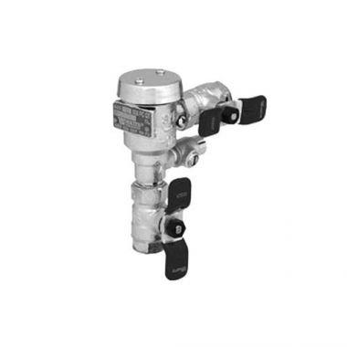 """T&S® Vacuum Breaker, 1/2"""" NPT Inlet & Outlet - RFS036/B-0963"""