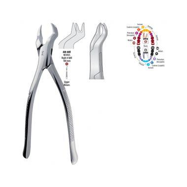 BMT GD - TOOTH FORCEP, UPPER MOLAR, RIGHT, #88R